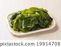 鹽海藻 19914708