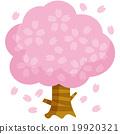 櫻桃樹A. 19920321