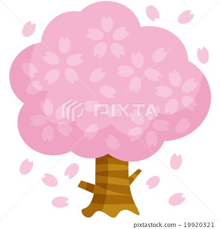 樱桃树A. 19920321