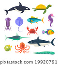 Vector set of sea marine fish and animals 19920791