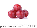 Red grapes isolated on a white background 19921433
