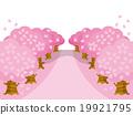 櫻花行變異水平的粉紅色 19921795