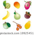 열대 과일 9 가지 19925451