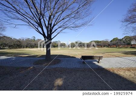Yumenoshima Park in Koto Ward 19925974