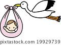 stork, storks, baby 19929739