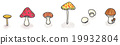 mushroom, mushrooms, illustration 19932804