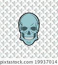 Skull vector, background lily flower 19937014