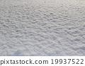 눈 19937522