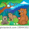 bears, nature, vector 19944302