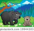 bears, nature, vector 19944303