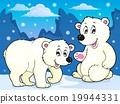 polar, bears, vector 19944331