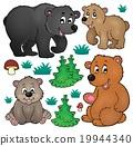 벡터, 테마, 곰 19944340