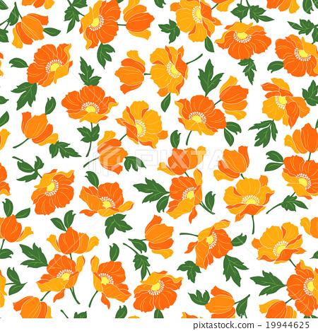 罌粟花朵圖案 19944625