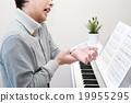 器官 鍵盤 鋼琴 19955295