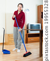 broom, clean, housewife 19955328