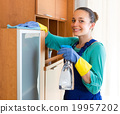 Woman cleaning at the office 19957202