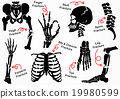 Set Bone Fracture Icon  19980599