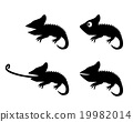 Set of lizard in silhouette style. side view 19982014