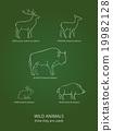 Wild live animals poster 19982128