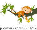 Baby Monkey on a Tree 19983217