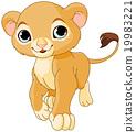 Walking Young Lion 19983221