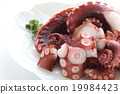 octopus, seafood, sashimi 19984423