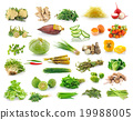 Vegetables collection isolated on white background 19988005