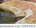 Shirasagi (ฤดูหนาว) ที่บินไปยังสวน Ashihara ใน Minoh และพักผ่อนบนฝั่งของสระ 20003023