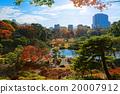 ต้นเมเปิล,สวนญี่ปุ่่น,ฤดูใบไม้ร่วง 20007912