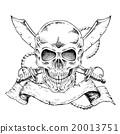 向量圖 向量 頭骨 20013751