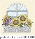 阳台 鸟儿 鸟 20014188