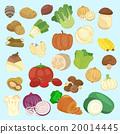 新鮮 蔬菜 向量圖 20014445