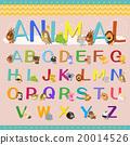 字母 动物 可爱 20014526