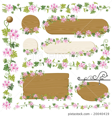 天竺葵 框架 帧 20040419