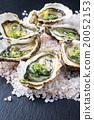 Fresh Oysters 20052153