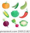 Set of Fresh Vegetables  20052182