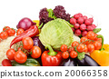 set vegetables isolated on white background 20066358