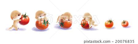 illustration 數字動畫 醫療插圖 20076835