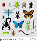 Set of Various Insects Design Flat 20081772
