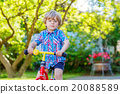 kid boy driving tricycle or bicycle in garden 20088589