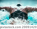Butterfly stroke swimming champion in action 20091420