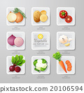Infographic food vegetables flat lay idea. Vector 20106594