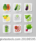 Infographic food vegetables flat lay idea. Vector 20106595