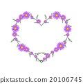 Beautiful Violet Daisy Flowers in Heart Shape 20106745