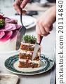 Christmas cake 20114840
