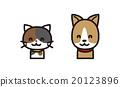 고양이와 개 20123896