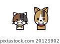 動物 illustration 數字動畫 20123902