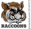 Raccoons Mascot 20140372
