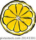 grapefruit, grapefruits, cross-section 20143301