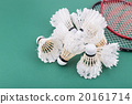 Group of worned out badminton shuttlecock  20161714